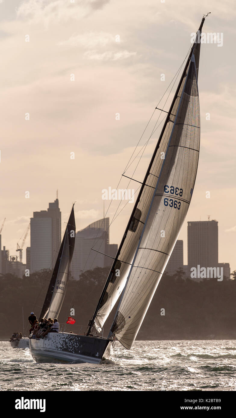 Yacht racing at dusk in Sydney Harbour, New South Wales, Australia, November 2012. All non-editorial uses must be cleared individually. - Stock Image
