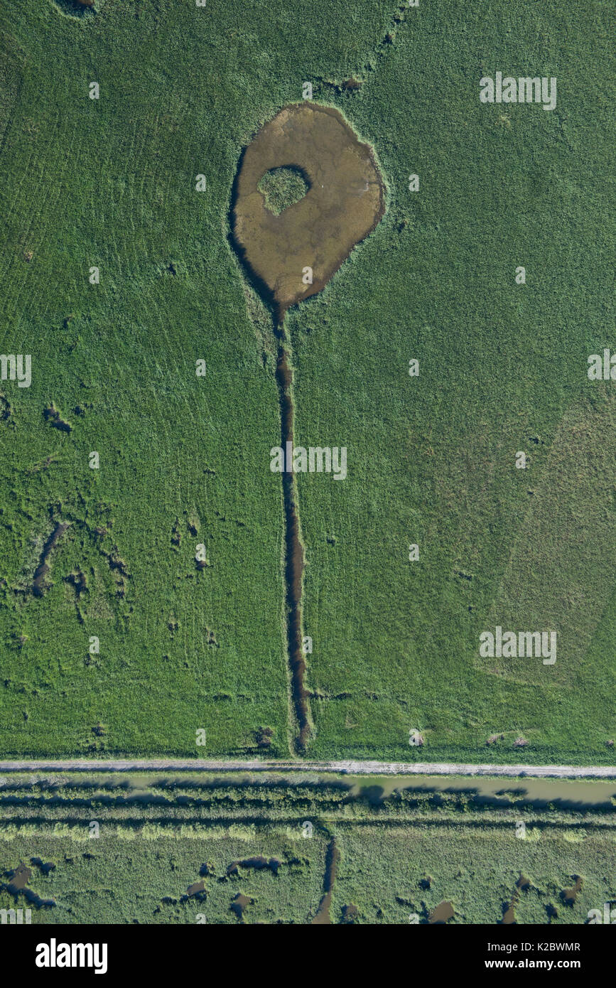 Aerial view of marsh managed for hunting, Camargue, France, July. - Stock Image