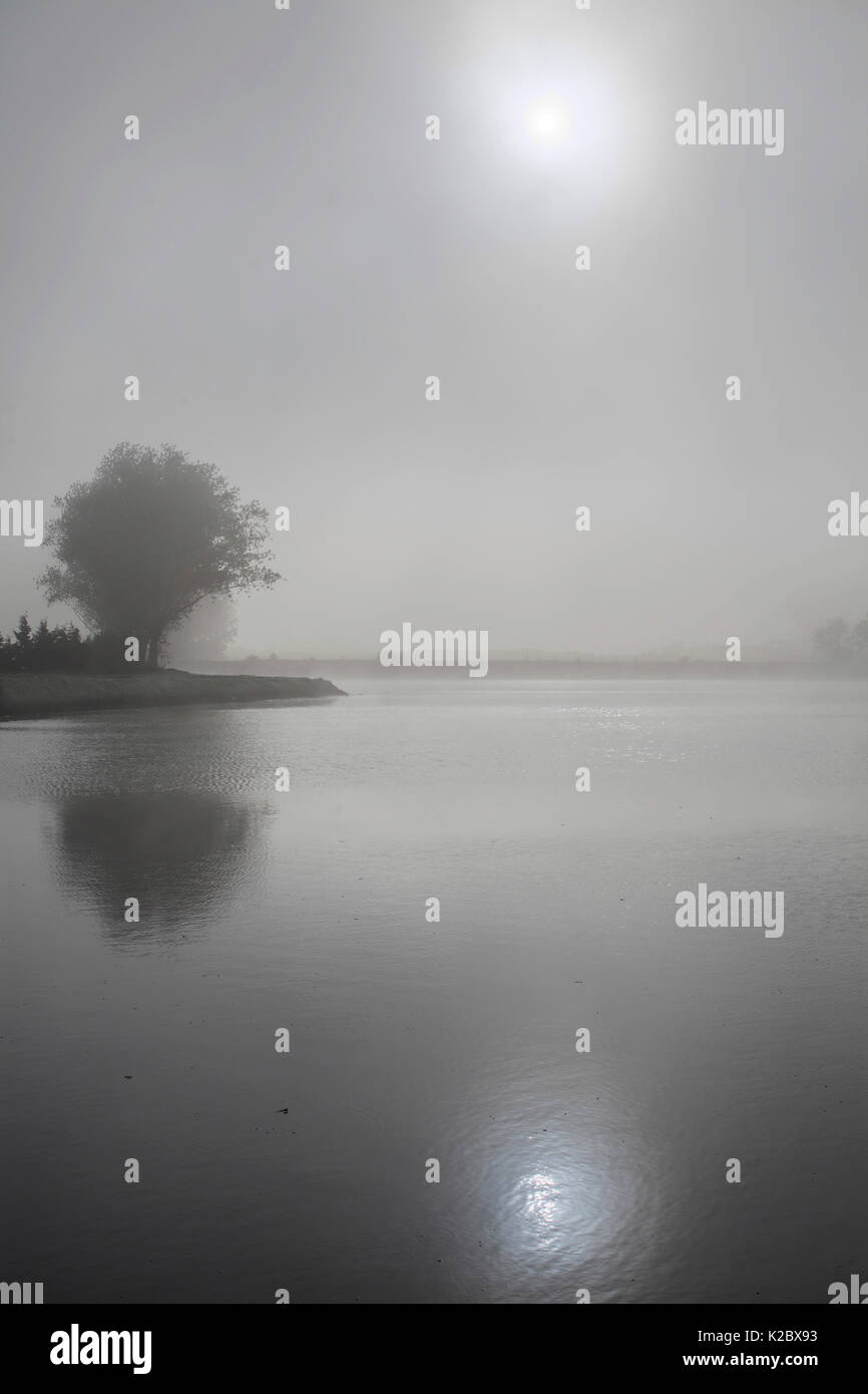 Sun shining through fog, Somme River, near Peronne, Picardy, France, October. - Stock Image