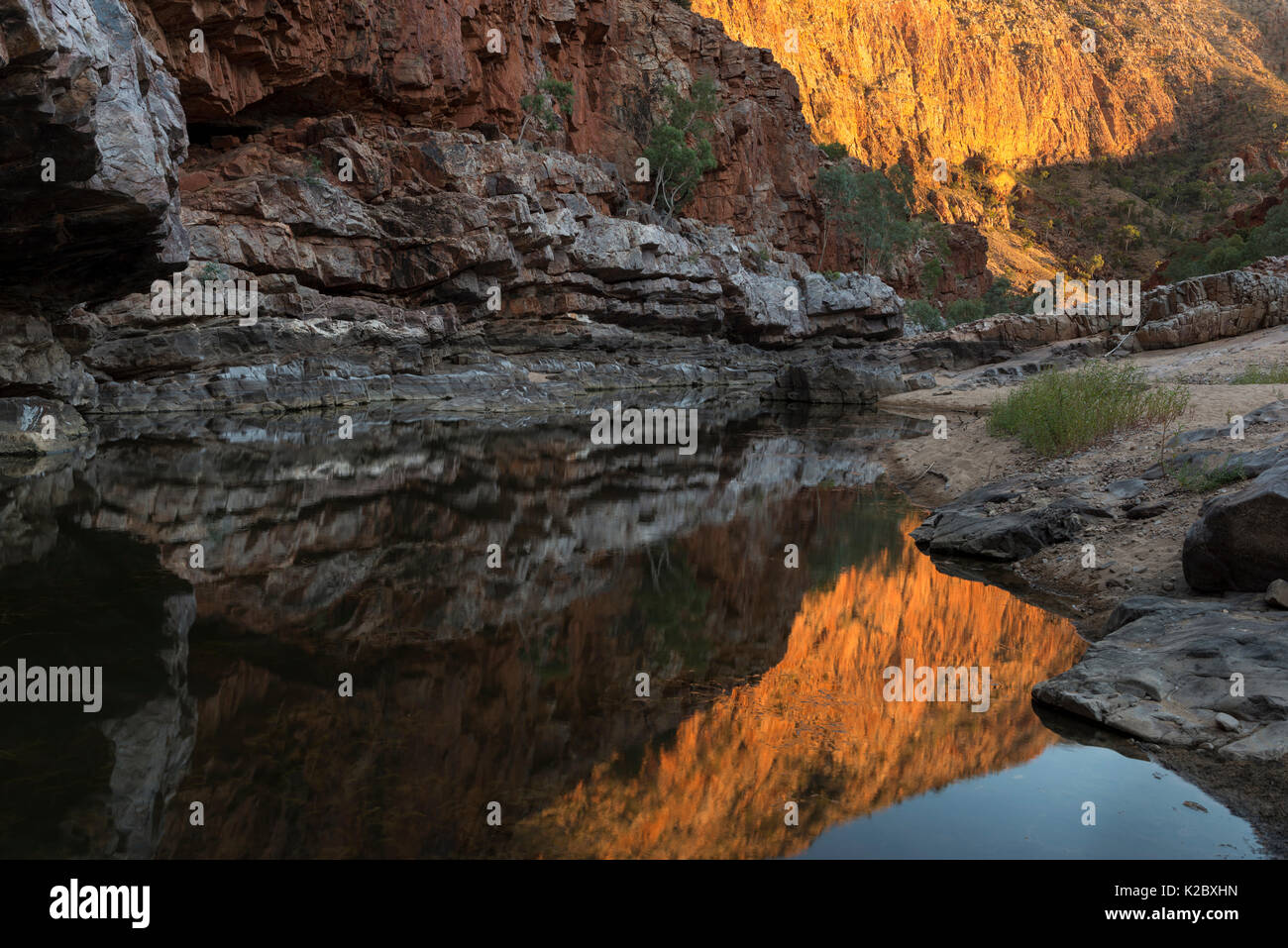 Reflections in waterhole, Ormiston Gorge, West MacDonnell Ranges Alice Springs, Northern Territory, Australia. - Stock Image