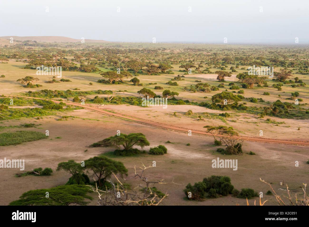 Aerial landscape of Amboseli National Park, Kenya, January 2015. - Stock Image