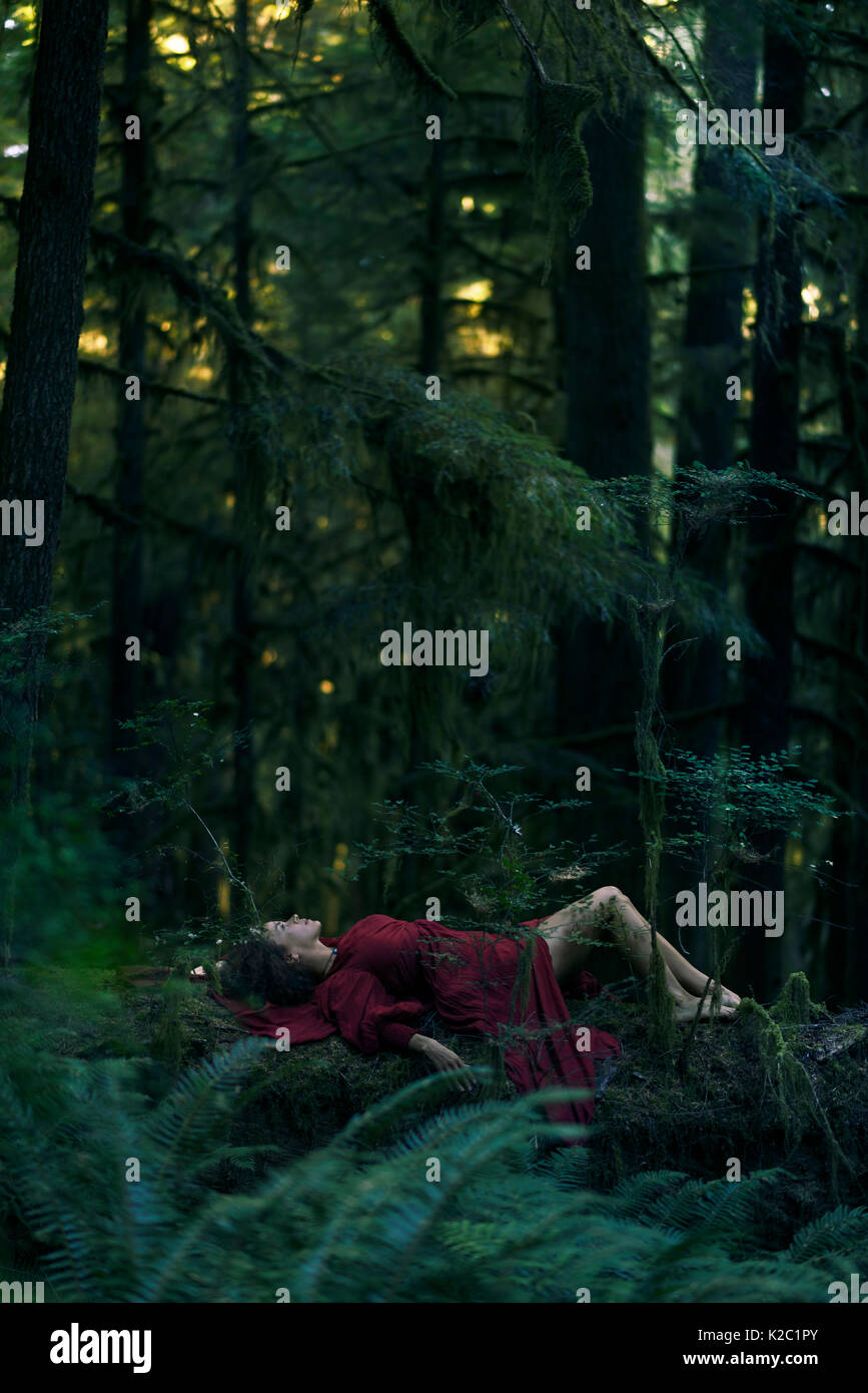 Young woman in red dress lying on a tree in a beautiful tranquil deep green mossy woods magical nature scenery - Stock Image
