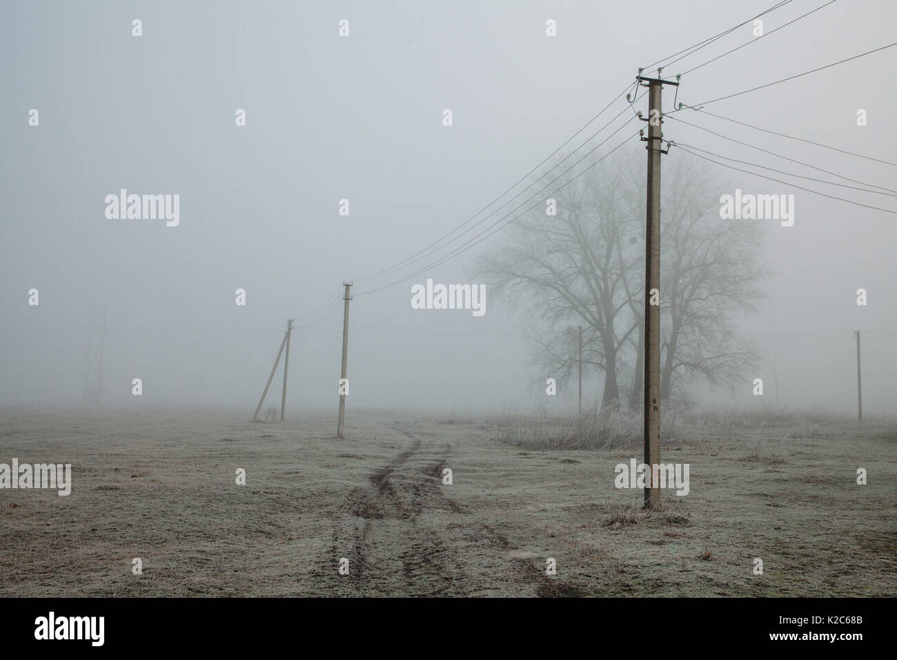 Foggy landscape with power lines rustic field background, frost on the ground, noise film effect - Stock Image