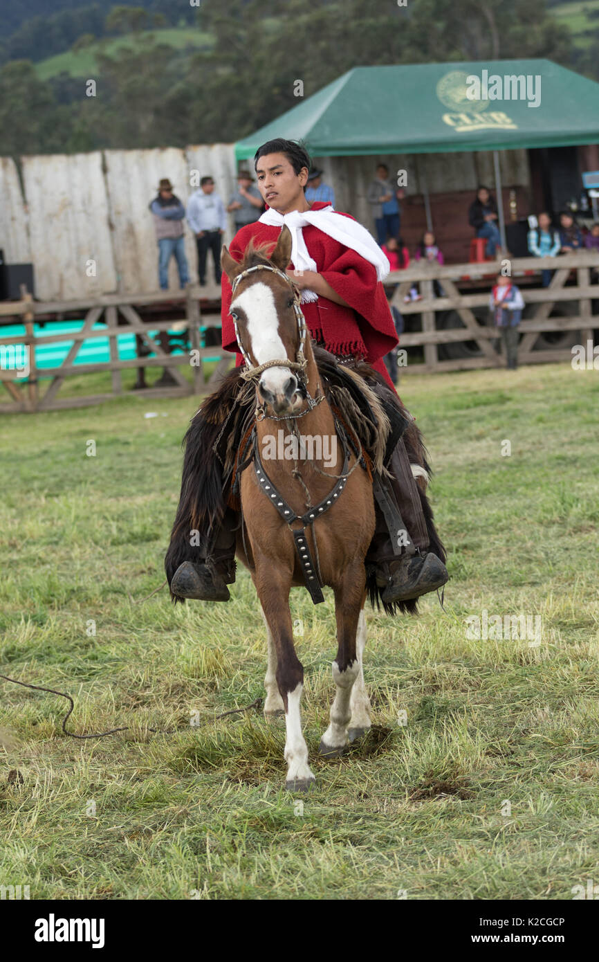 June 3, 2017 Machachi, Ecuador: young cowboy on horse back in traditional wear in the Andes region - Stock Image