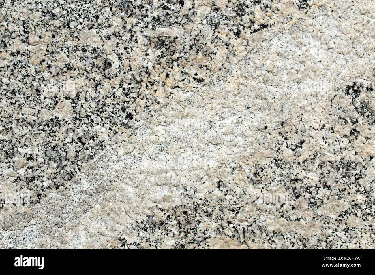 Vein intrusion in ghiandone metamorphic rock - Stock Image