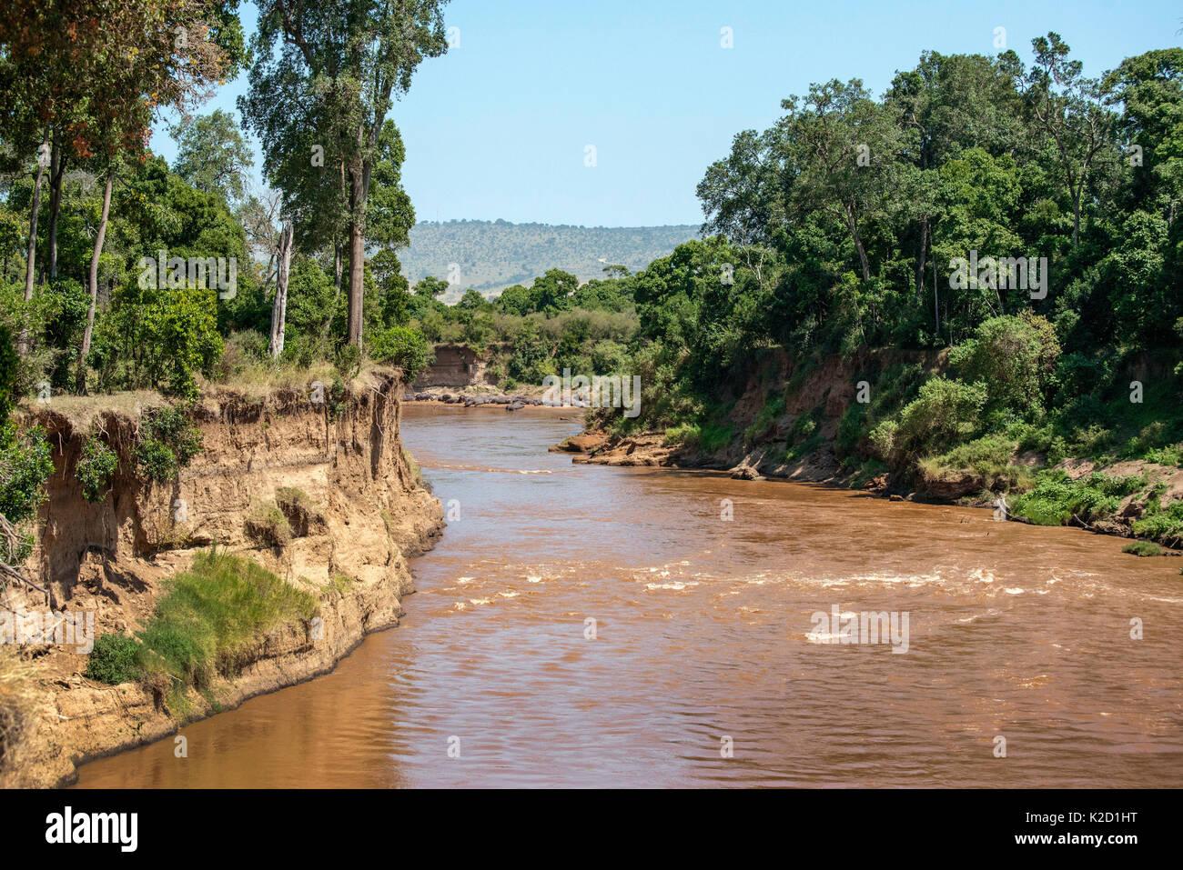 Mara River, Masai Mara National Reserve, Rift Valley Province, Kenya, East Africa, August 2012. Stock Photo