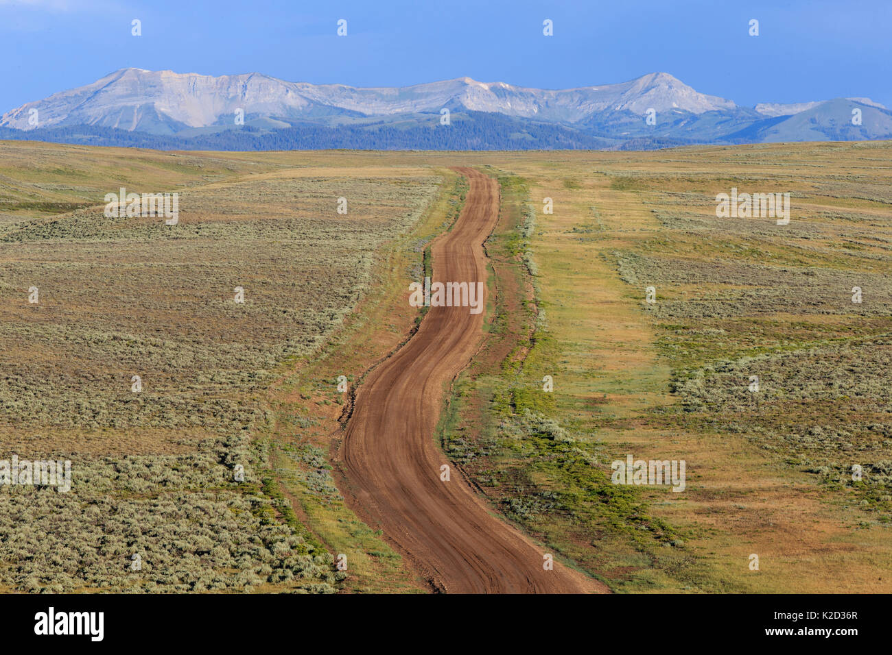 Road running through the sagebush steppe land in the Ryegrass BLM (Bureau of Land Management) area towards the Wyoming Mountain Range. Sublette County, Wyoming, USA. July. - Stock Image