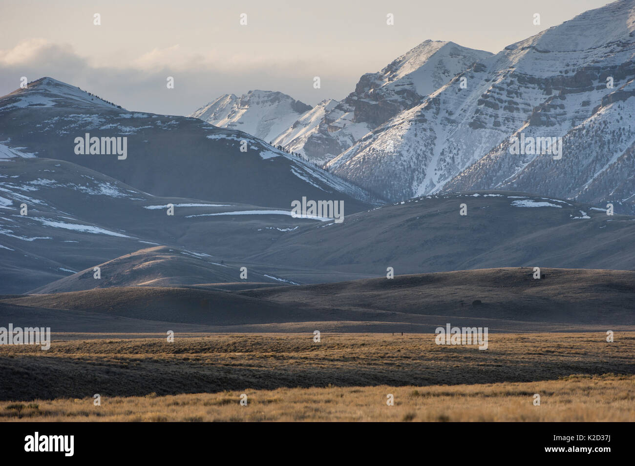 Sagebrush-steppe at the foot of the Sawtooth Mountains. Clark County, Idaho, USA, April 2012. - Stock Image