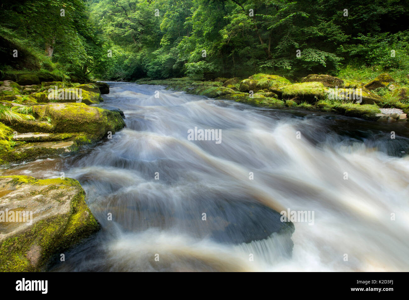 The Strid, River Wharfe, slow shutter speed showing movement of the water, Bolton Abbey Estate, Wharfedale, North Stock Photo
