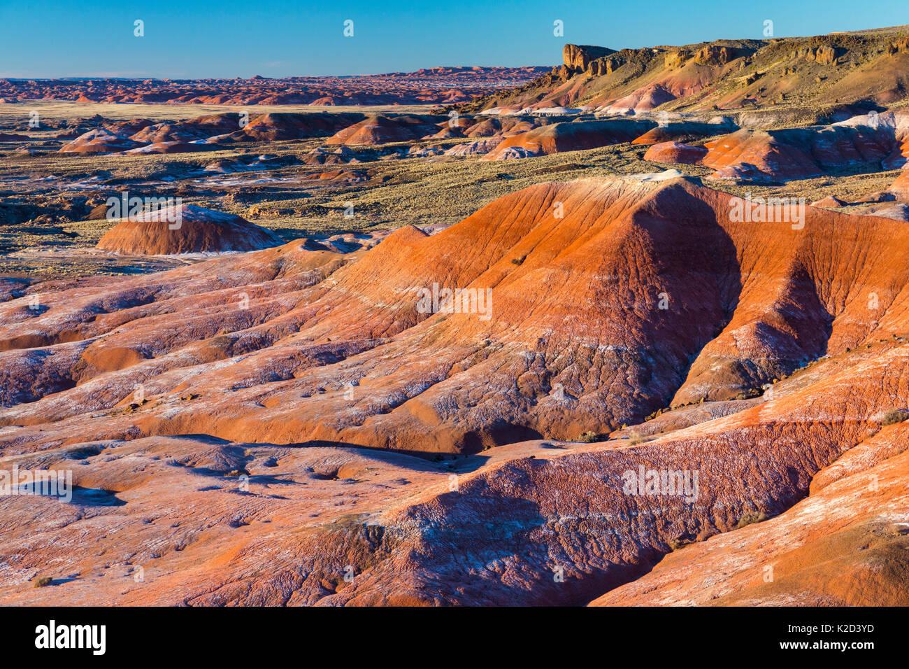 Colourful badlands, Petrified Forest National Park, Arizona, USA, February 2015. - Stock Image