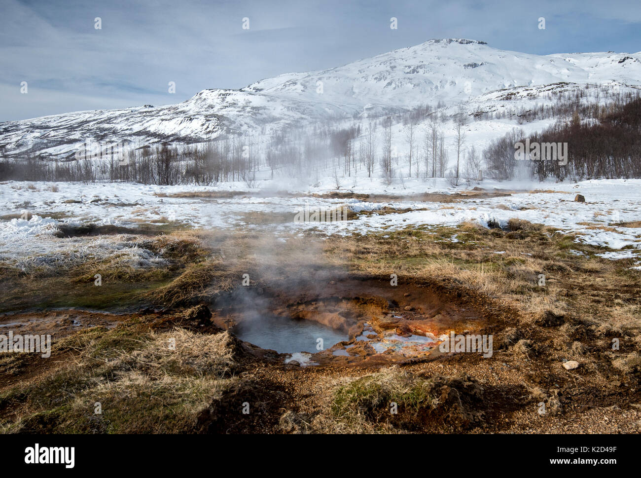 Small geothermal vent, Geysir Hot Spring Area, South West Iceland, March 2015. - Stock Image