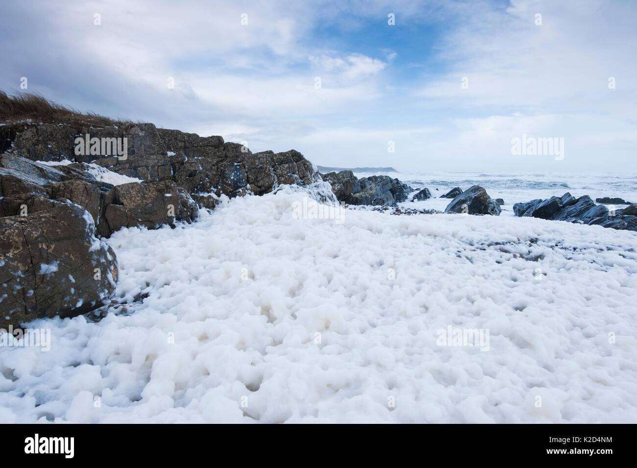 Spume on beach at Saligo Bay, Islay, Scotland, February 2014. - Stock Image