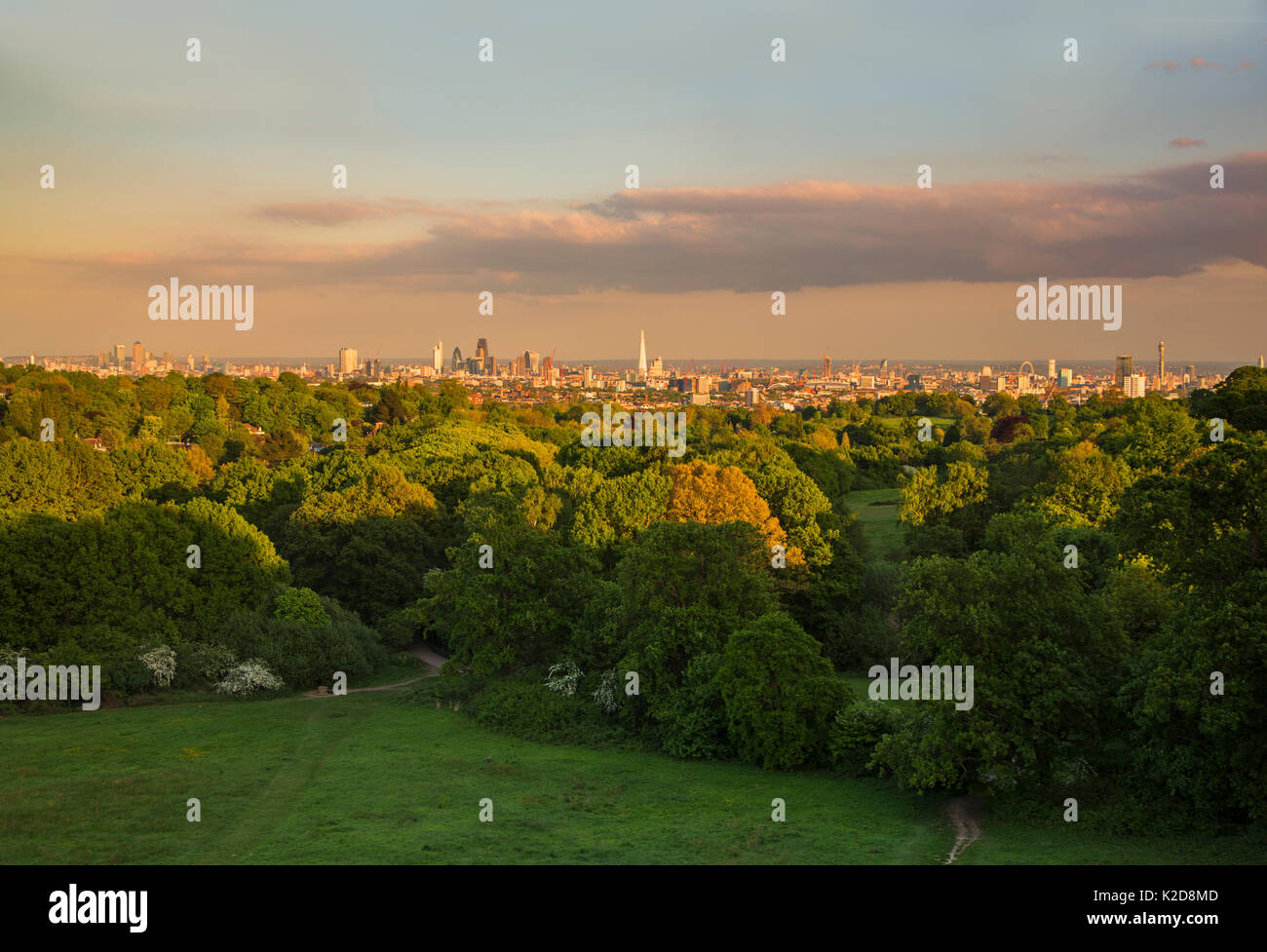 View of the City of London taken from a (MEWP) Mobile Elevated Working Platform, Hampstead Heath, London, England, UK, May 2015. - Stock Image