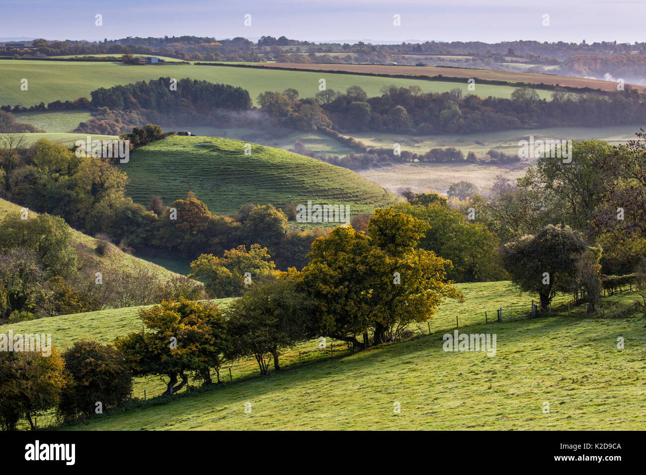Autumn view towards St.Catherines Valley from Cold Ashton, Gloucestershire. St. Catherine's Valley is a biological Site of Special Scientific Interest. October 2015. - Stock Image