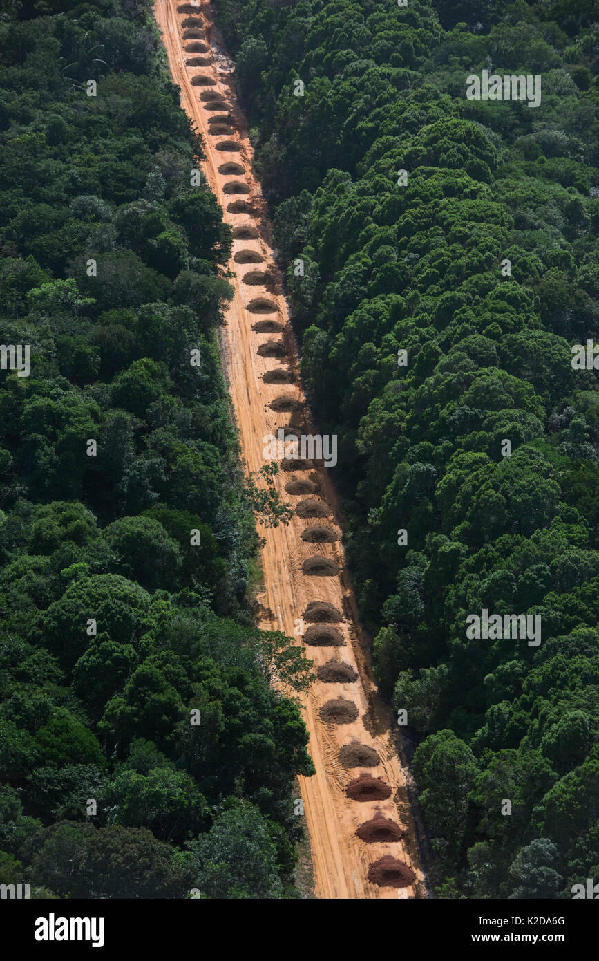 Dirt road running  through tropical rainforest, Guyana South America Stock Photo