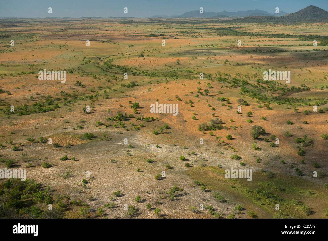 Aerial view of Rupununi savanna, Guyana, South America - Stock Image