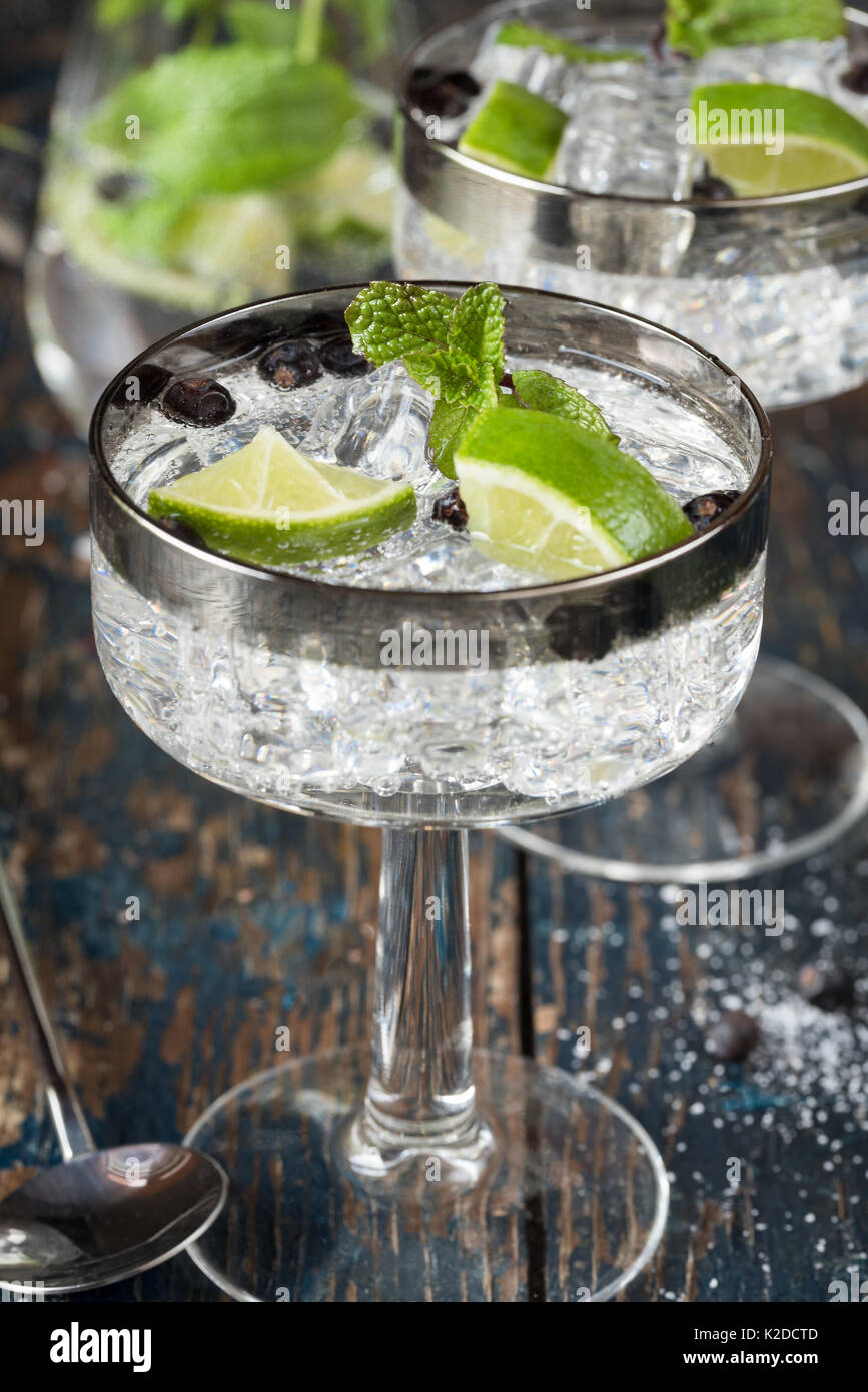 Gin and Tonics with Juniper Berries - Stock Image