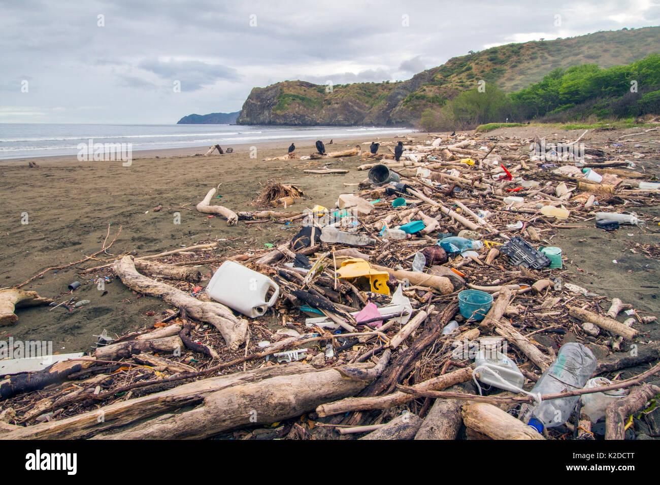 Plastic waste and driftwood washed in on the tide, Nancite Beach, Santa Rosa National Park, Costa Rica. November 2011. - Stock Image