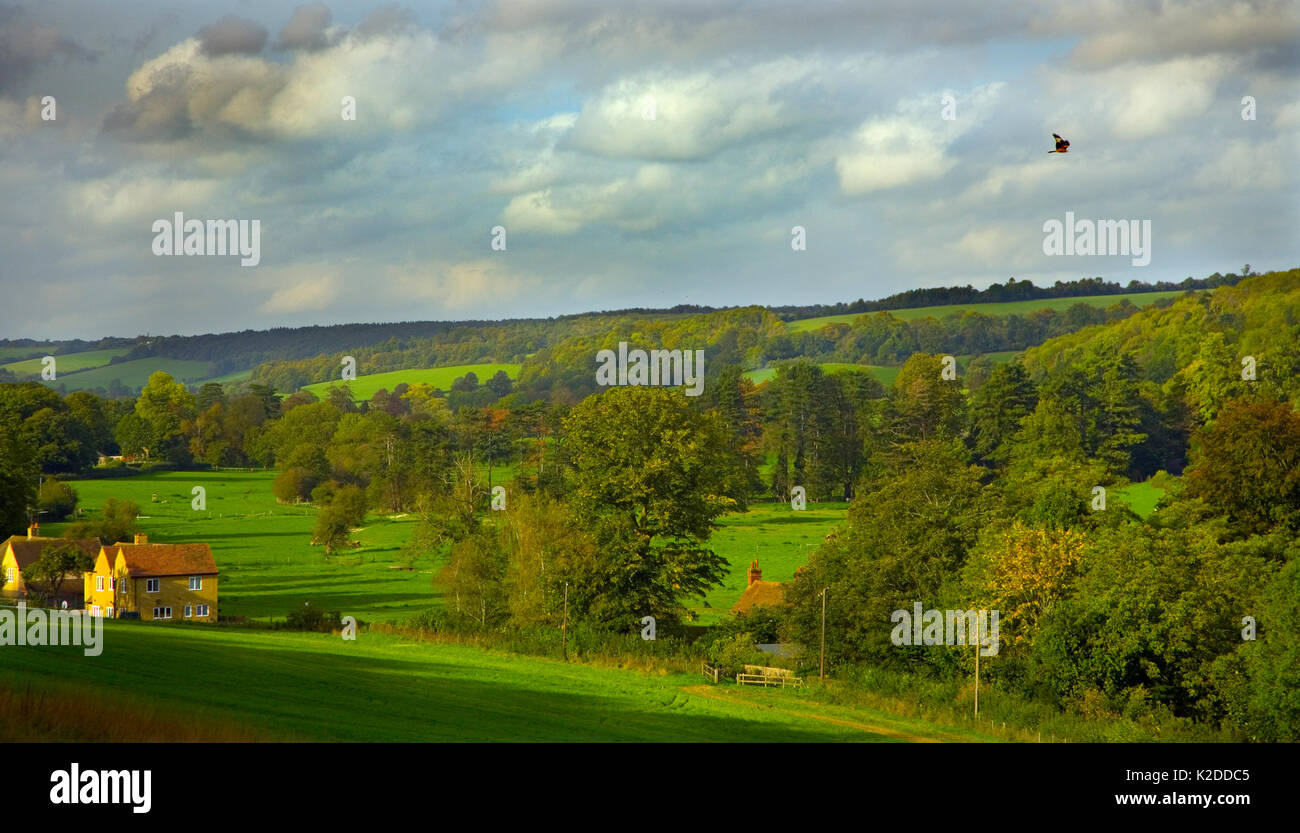 Landscape of Hambleden Valley, Buckinghamshire, UK October 2006. - Stock Image