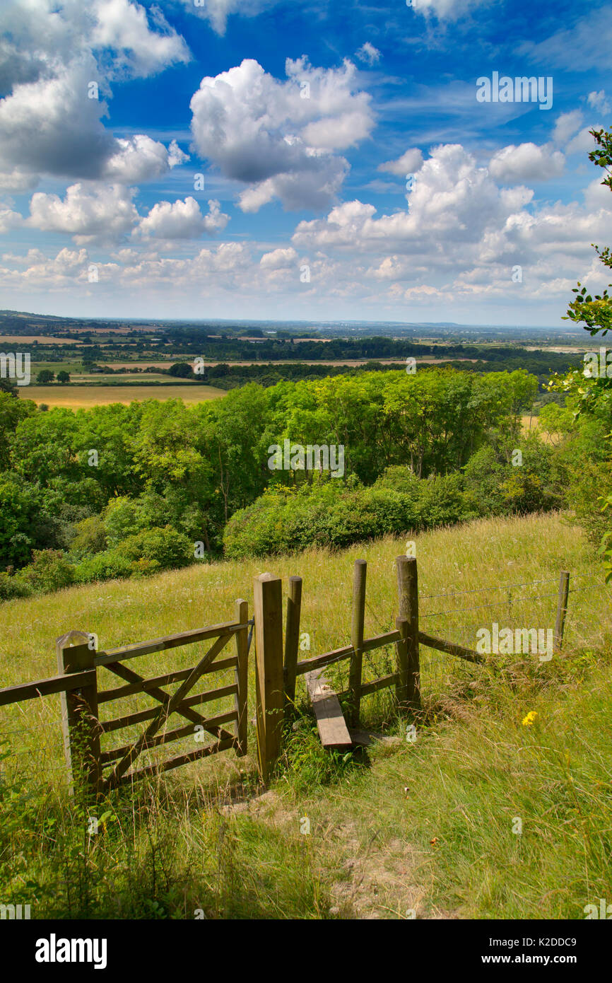 Stile and footpath, Aldbury Nowers Nature Reserve, the Chilterns, Hertfordshire, UK, July 2016 - Stock Image