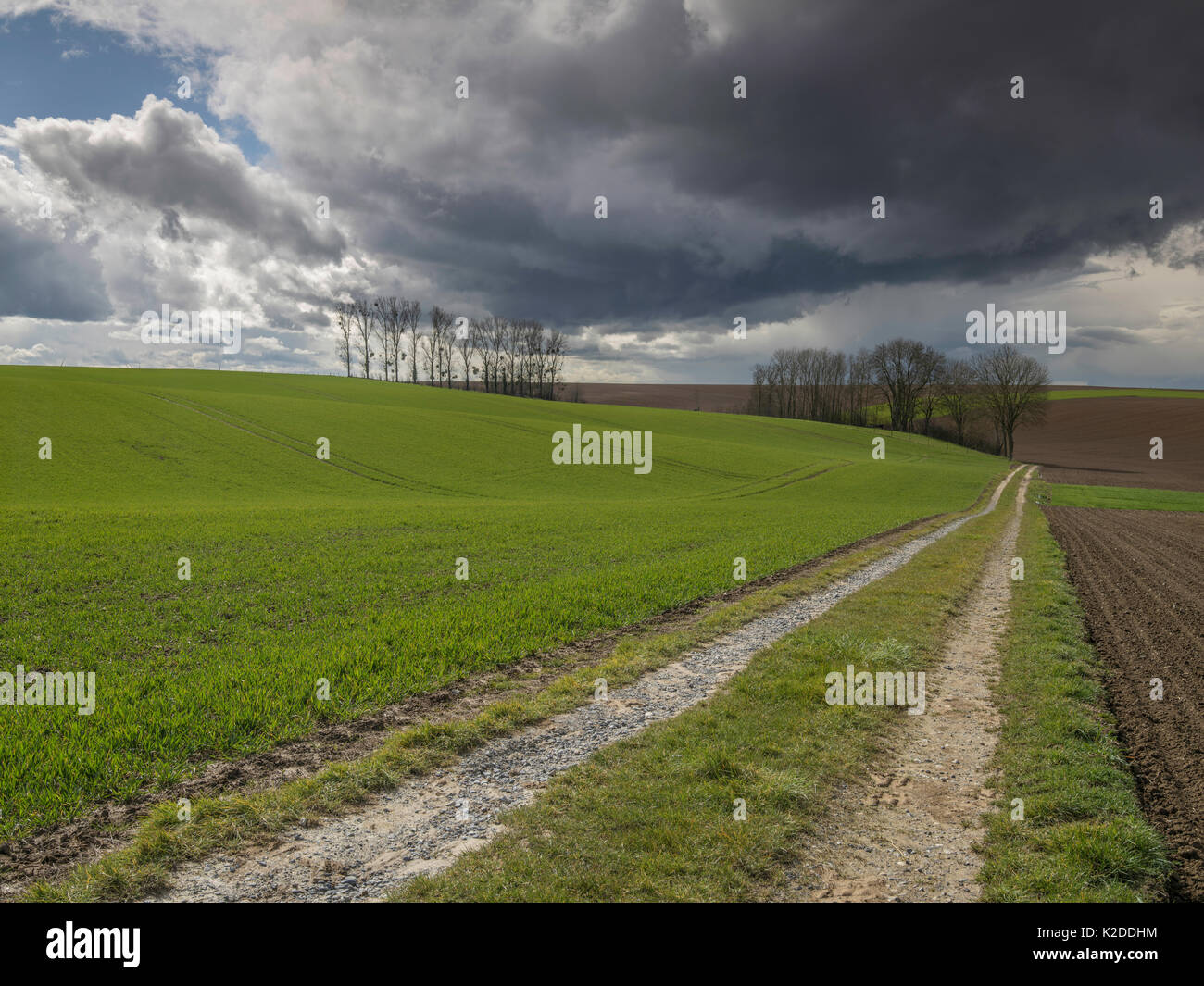 Country track with dark cumulonimbus clouds above,  Surfontaine, Picardy, France, March 2016. - Stock Image