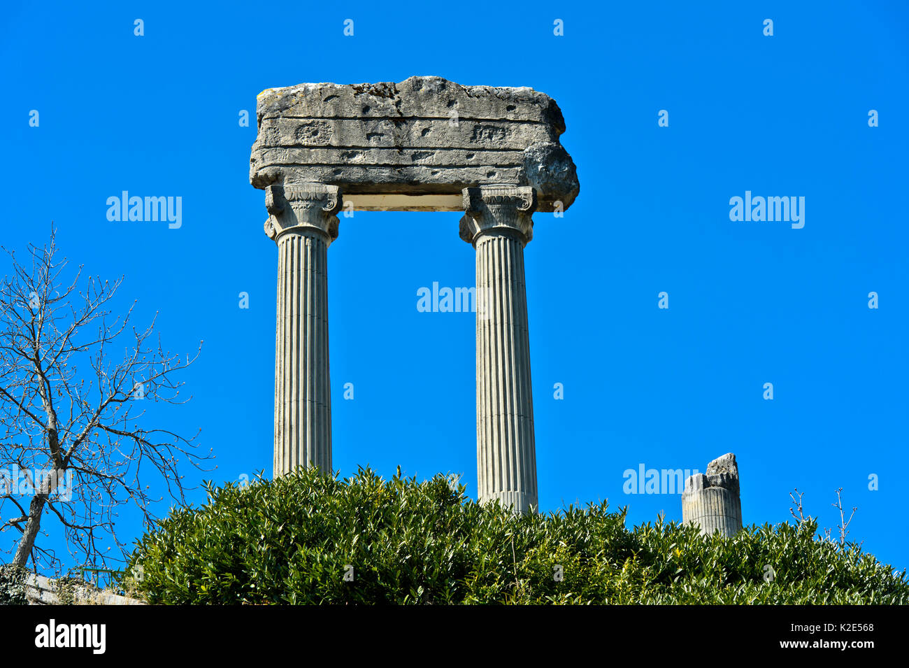 Corinthian columns from Noviodunum Helvetiorum, Nyon, Vaud, Switzerland - Stock Image