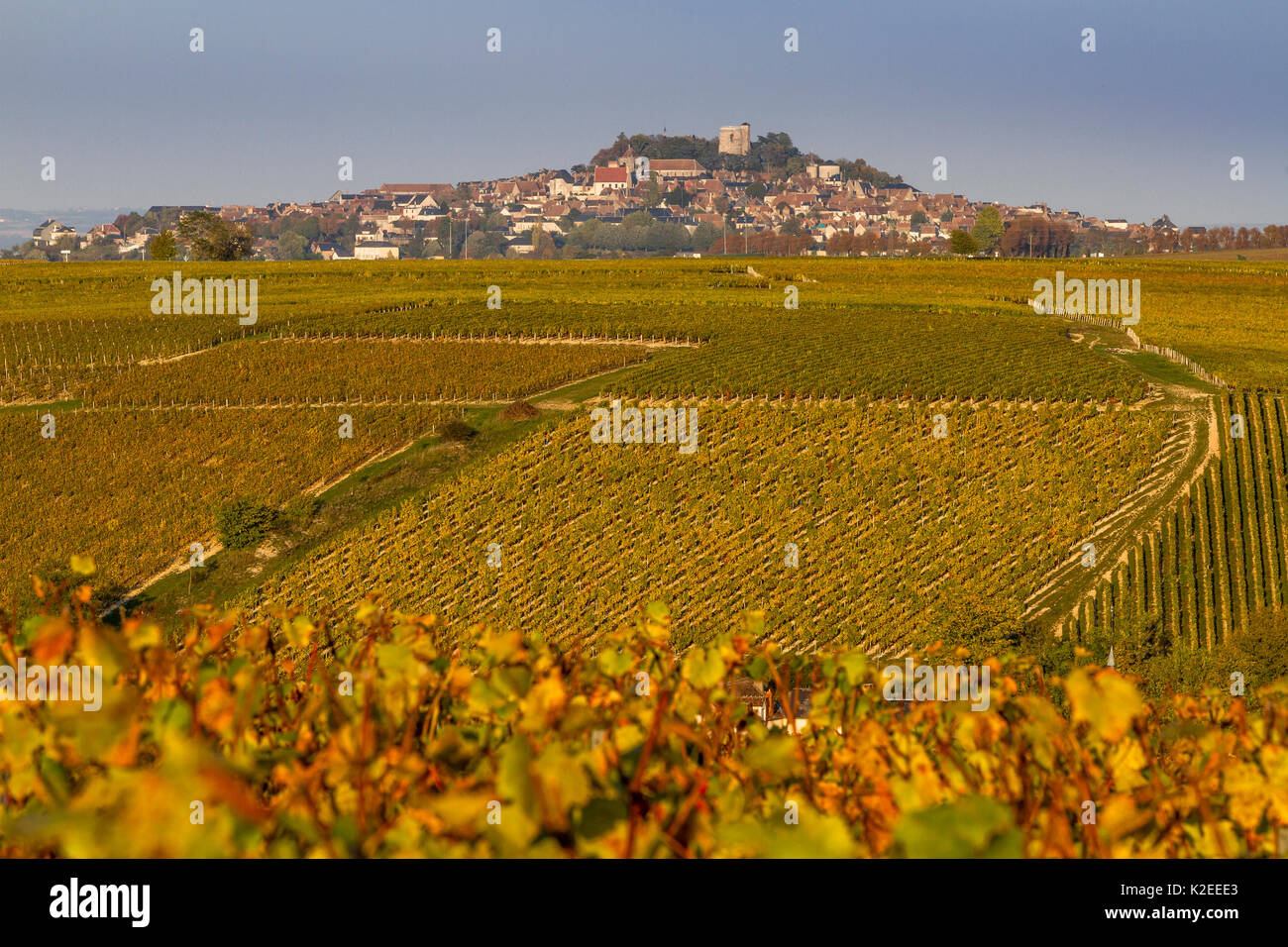 sancerre stock photos  u0026 sancerre stock images