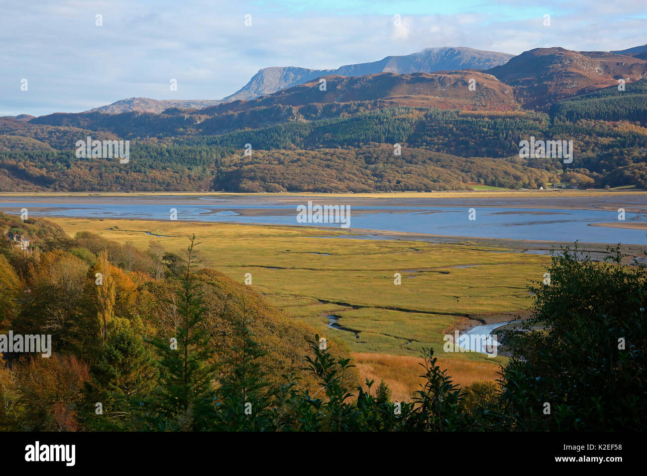 The Mawddach Estuary, West Wales, Wales, UK. October. - Stock Image