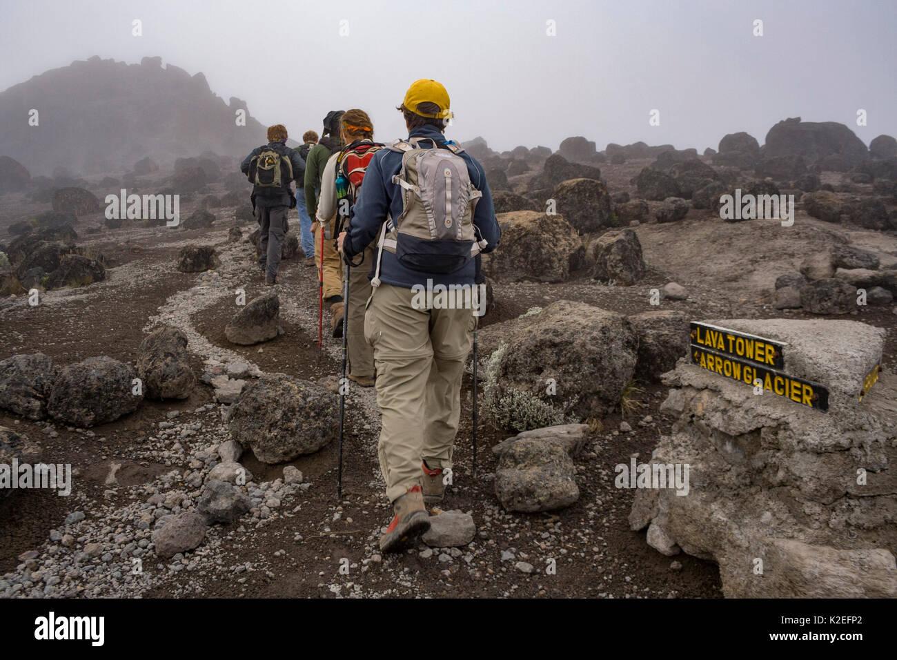 Hikers along the Machame Route, Mount Kilimanjaro, Tanzania. May 2008 - Stock Image