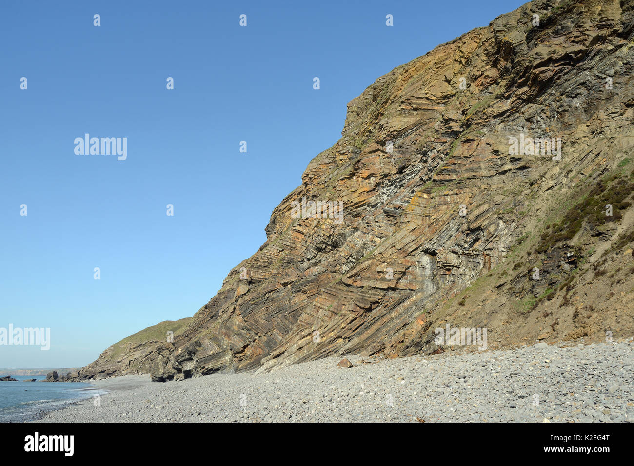 Chevron folds of Sandstone, mudstone and black shale rock layers in Millook Haven cliffs, Cornwall, UK, April 2014. - Stock Image