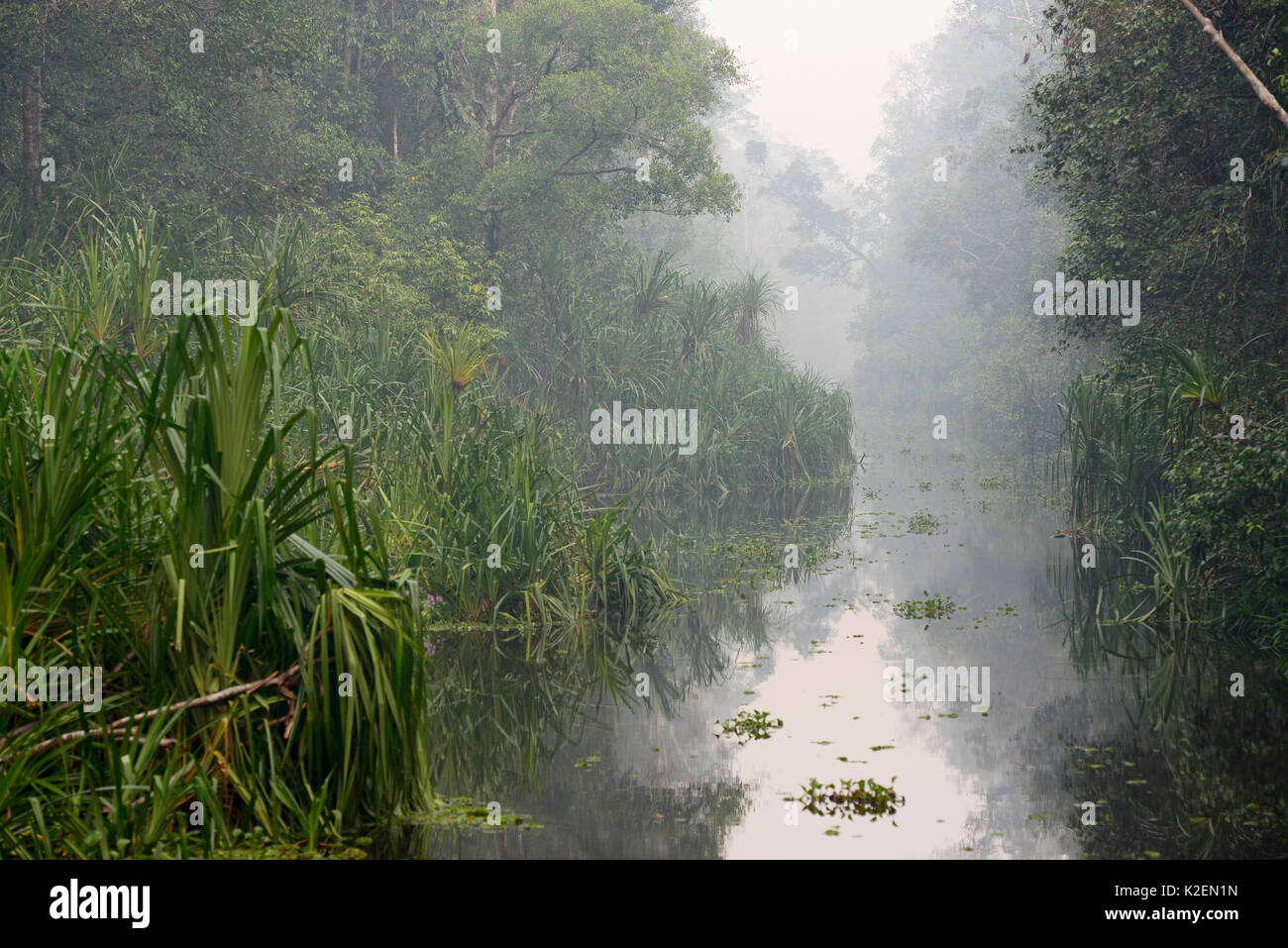 Sekonyer River with smoke in the air from an illegal forest fire, Tanjung Puting National Park, Indonesia, Central Borneo Province, Central Kalimantan, October 2015. - Stock Image