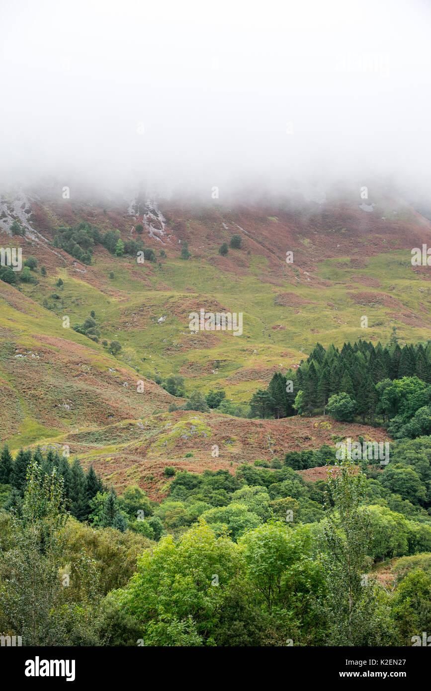 Rain cloud forming thick fog descending from steep hillside of Bidean nam Bian in Glen Coe, Argyll, Scottish Highlands, Scotland, UK, September 2016. - Stock Image