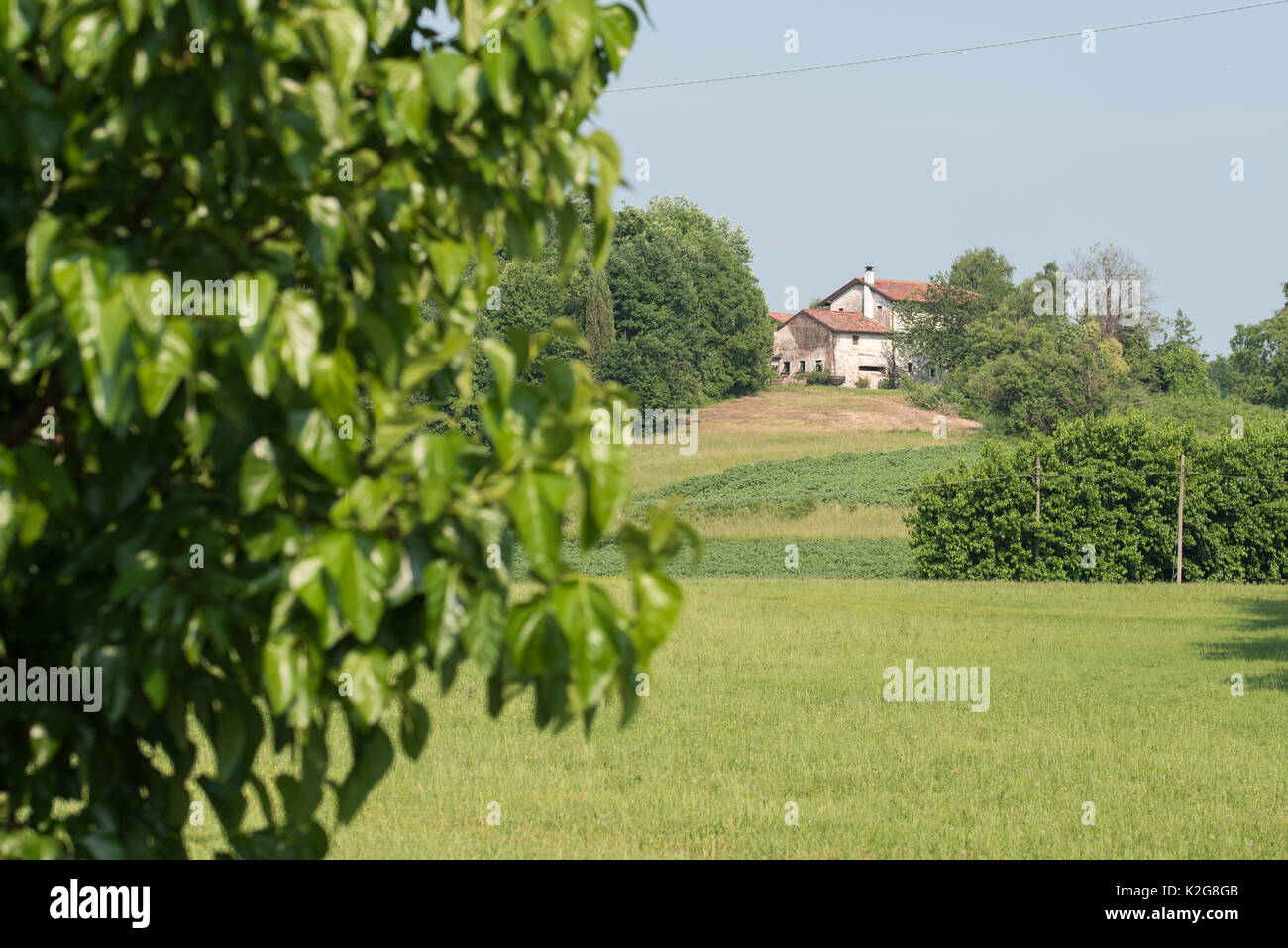 Country houses on the Friuli hills - Stock Image