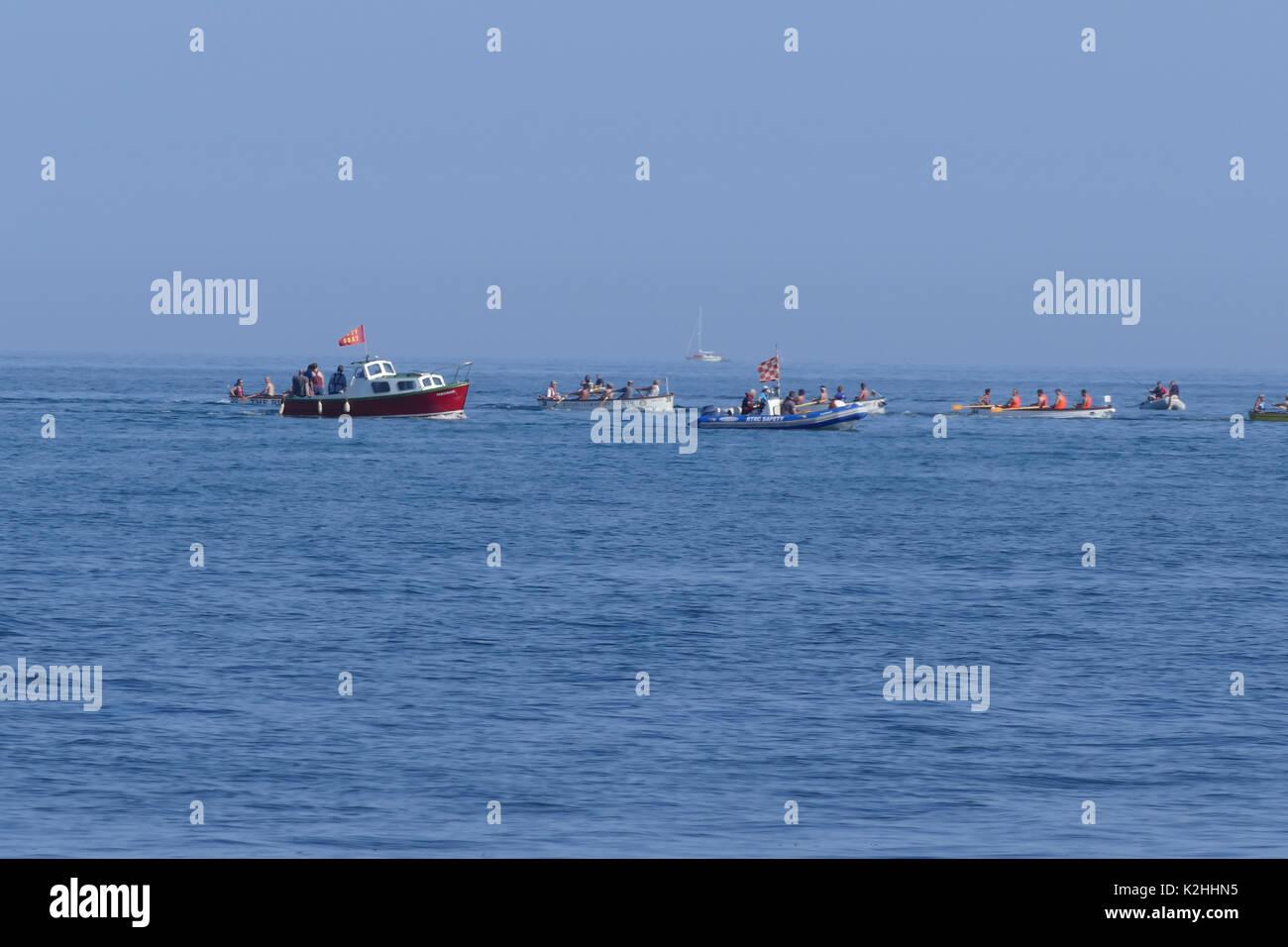 Shaldon regatta 2017  seine boat racing - Stock Image