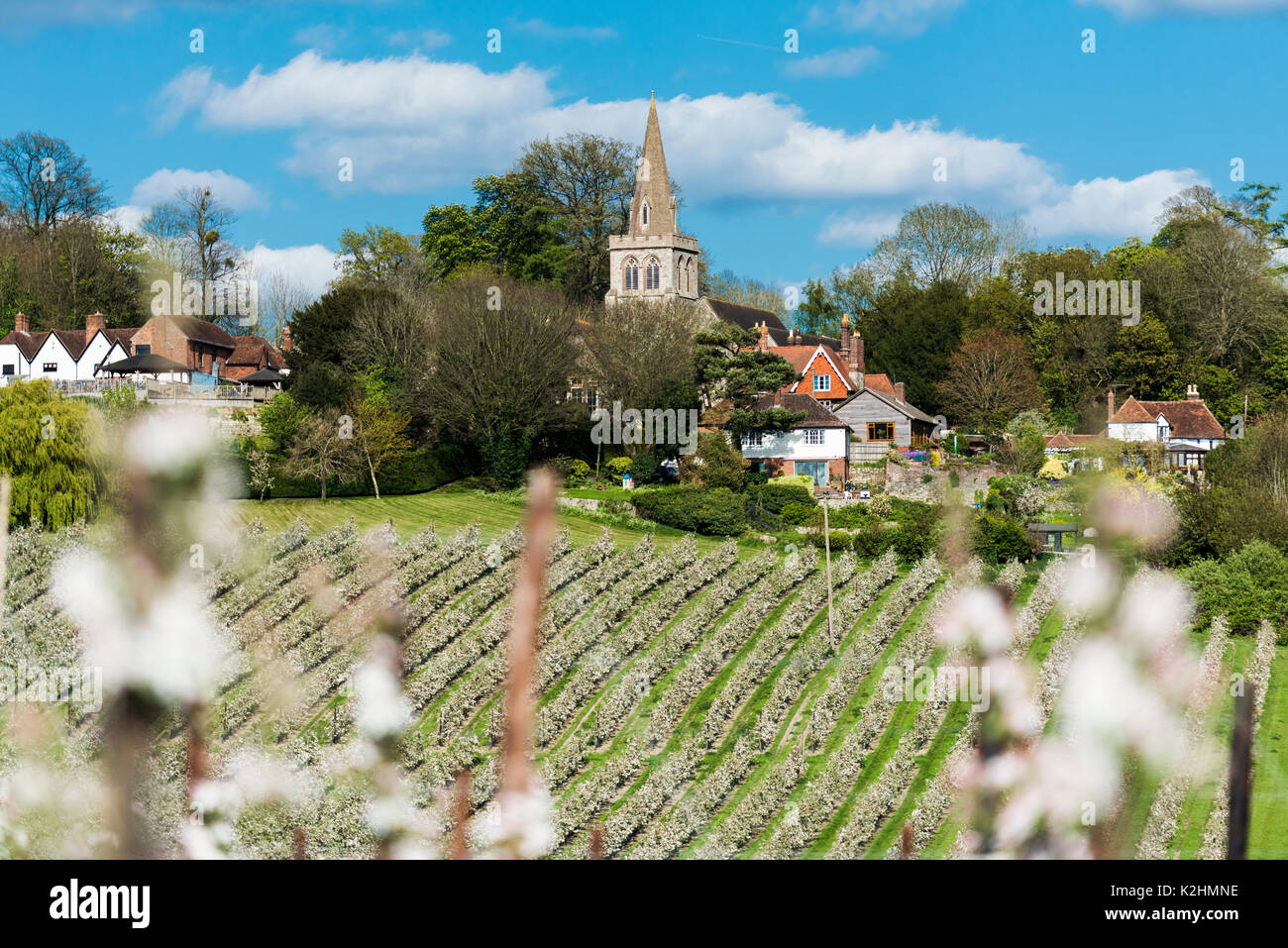 Linton Village just outside on Maidstone in Kent, England. St Nicholas Church being the key feature of the village - Stock Image