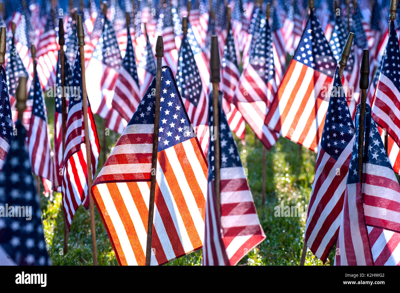 Field of Flags memorial honoring US Iraq war dead. - Stock Image