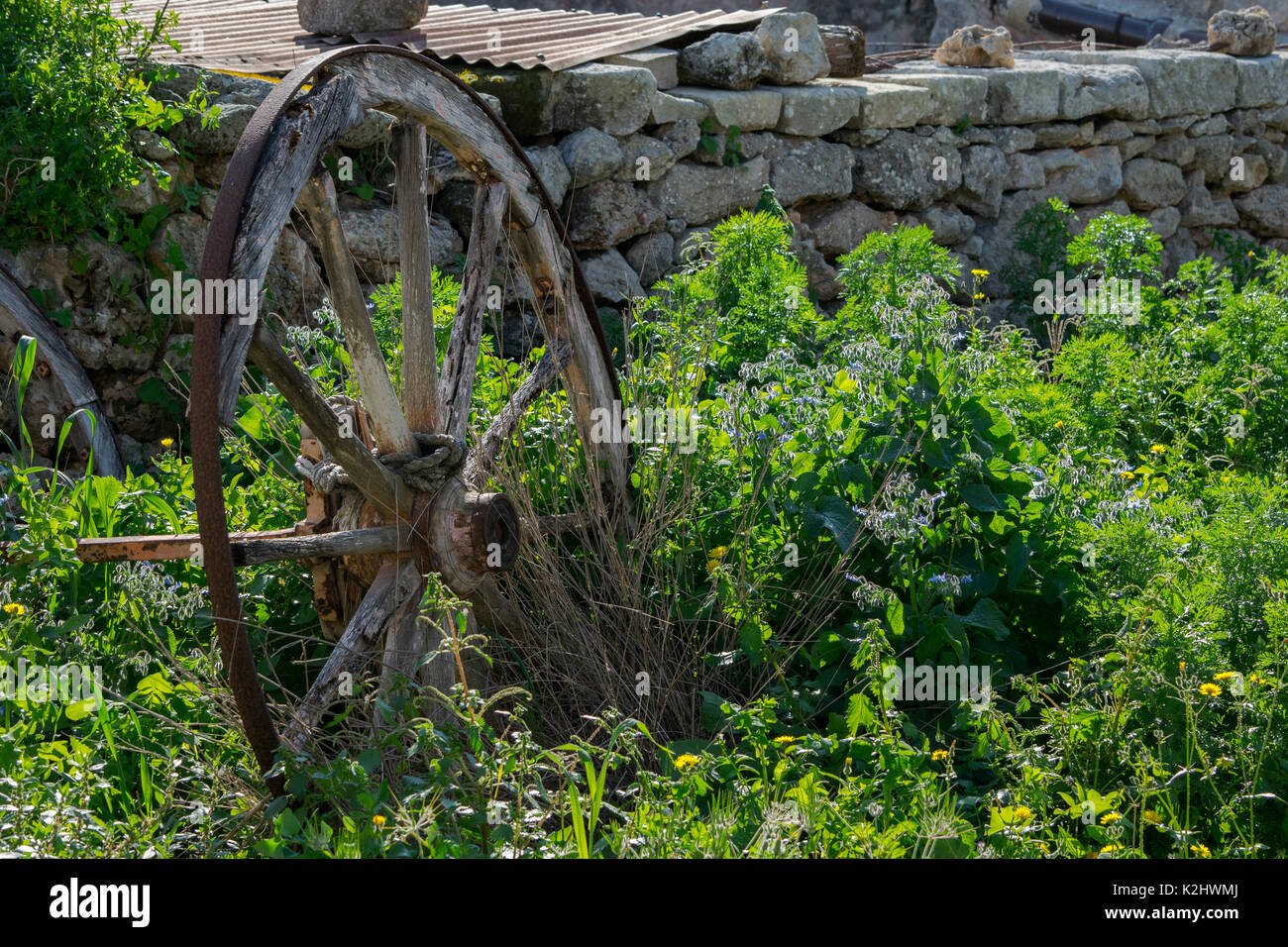 An old cartwheel left to rot and rust in the Maltese countryside, being overgrown by vegetation. - Stock Image