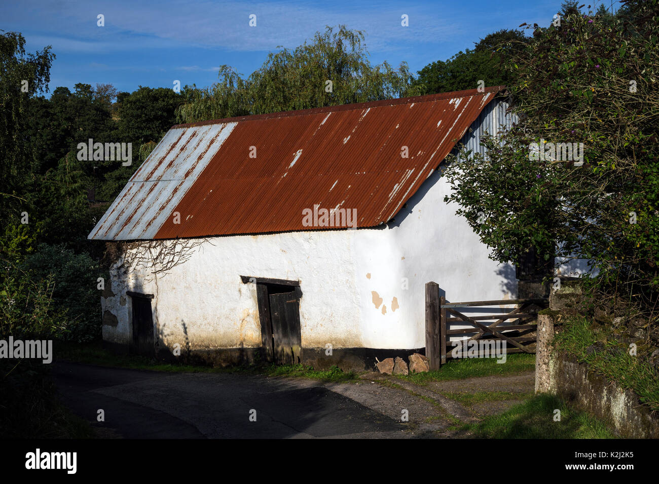 Devon cob barns in rural lane near Dunsford,corrugated tin roofs,lintels,Agricultural range of cladding,winding lanes - Stock Image