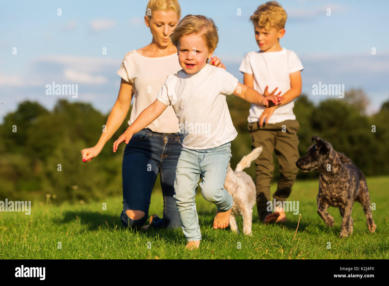 picture of a mother with two children and two small dogs who are playing outdoors - Stock Image