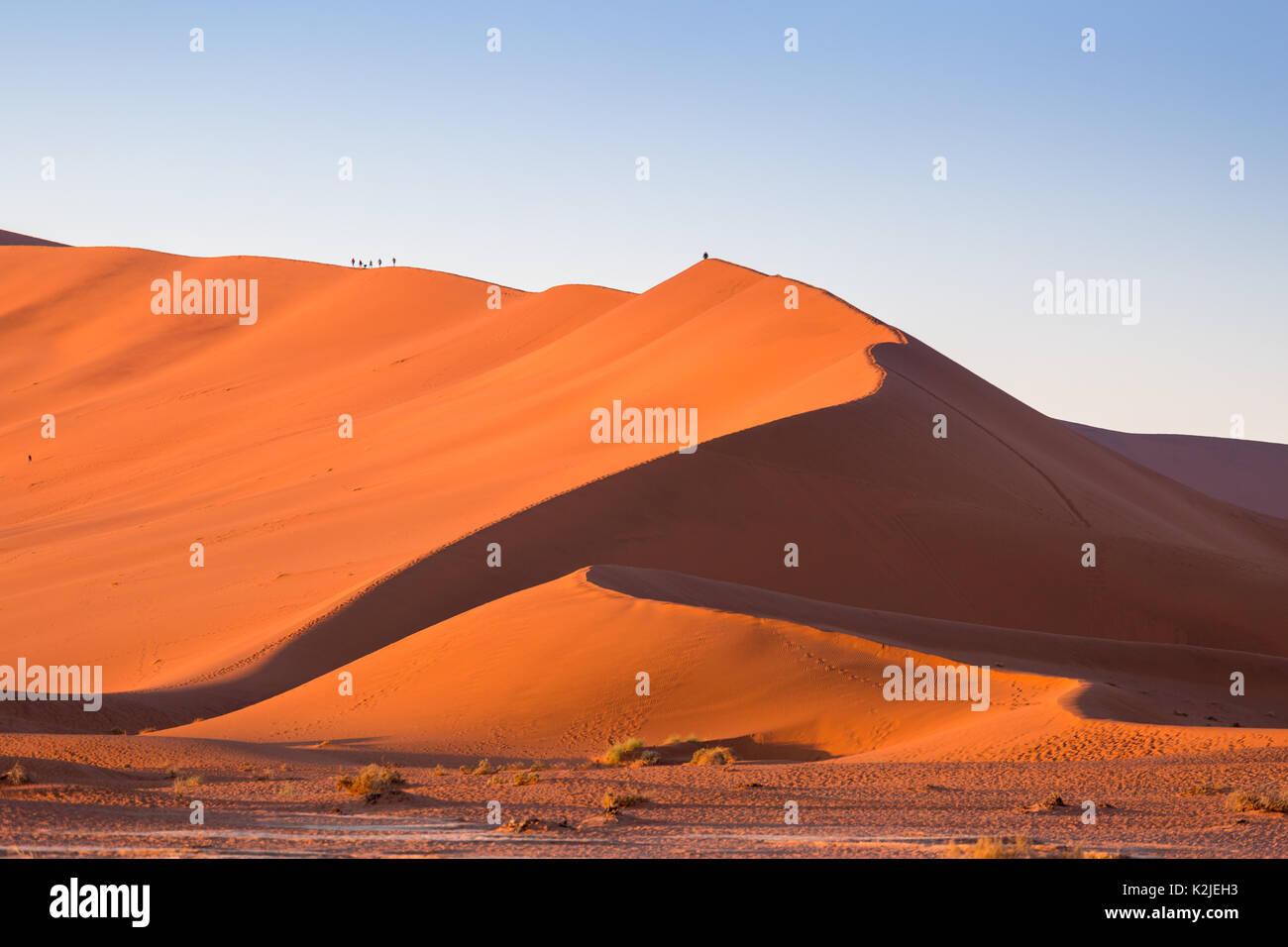 Climbing Big Daddy Dune At Namib Desert Sossusvlei Sand