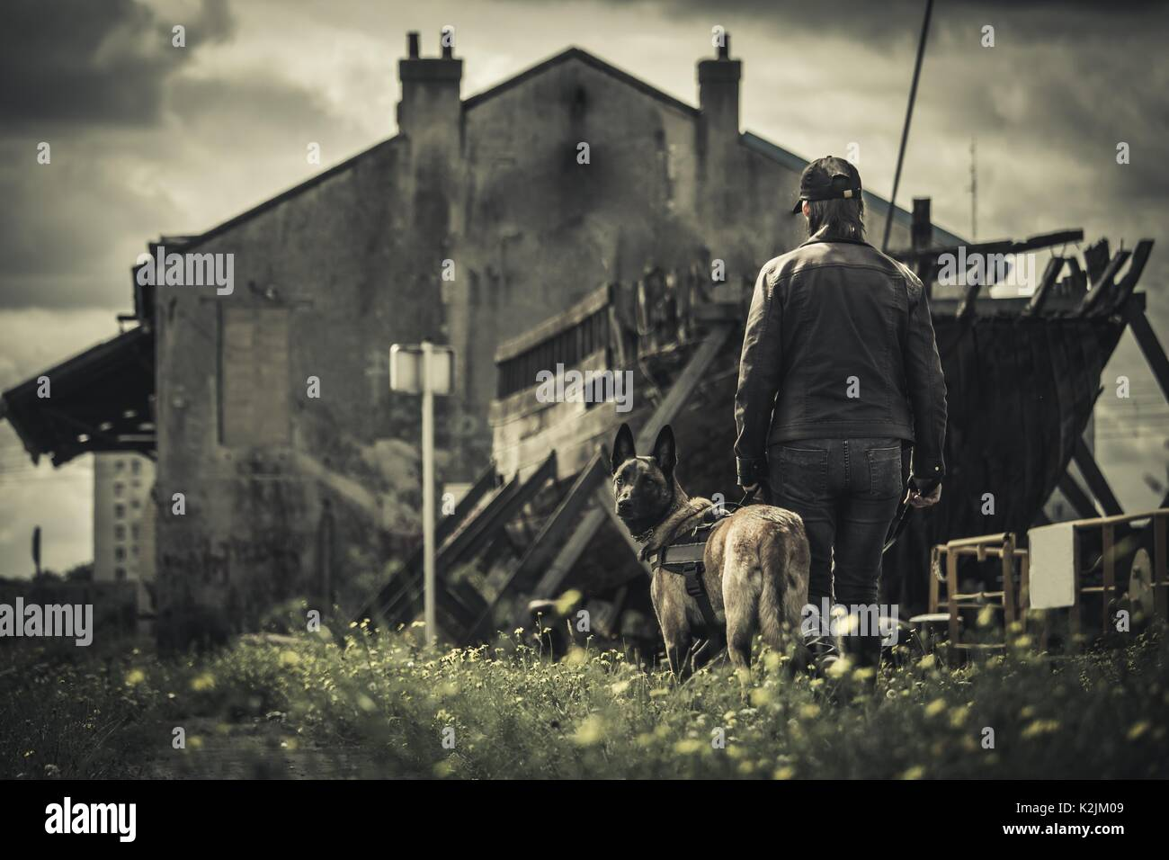 A woman walks with her dog in apocalyptic boat landscape and abandoned building - Stock Image