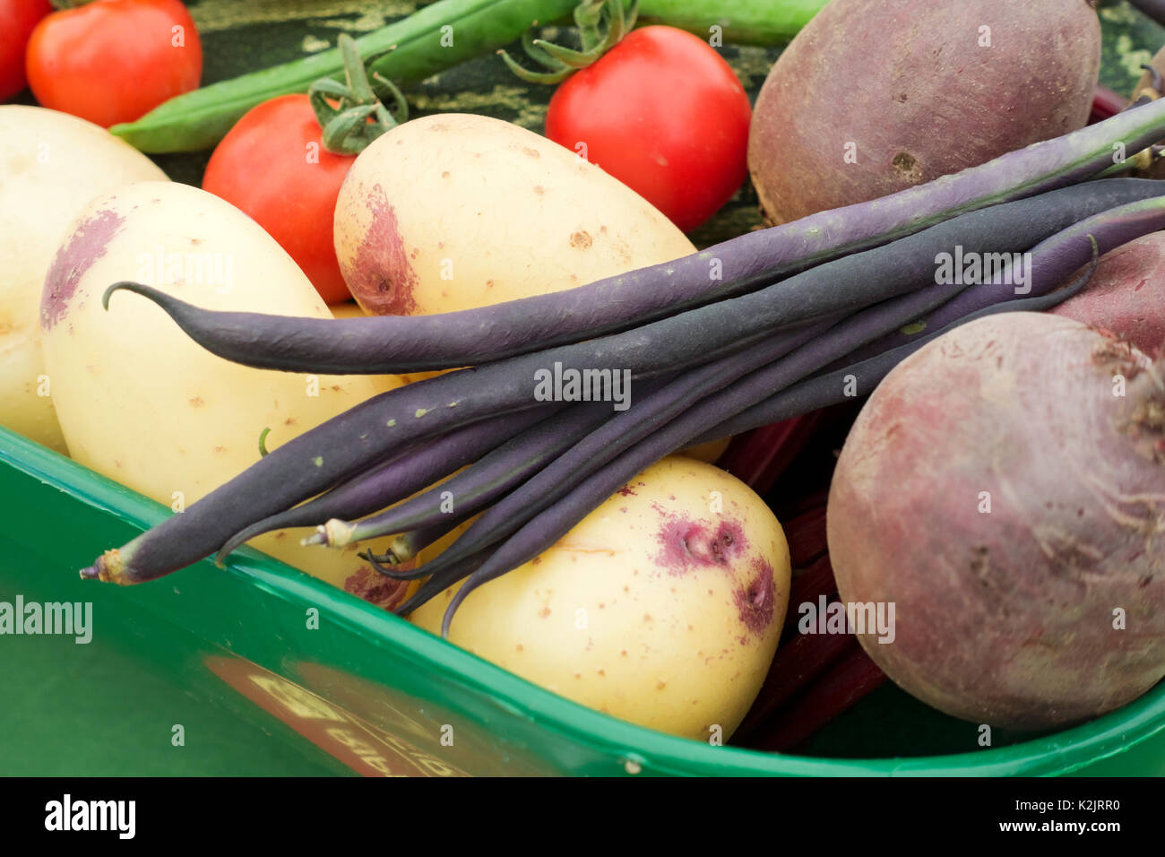 Raw vegetables close up England UK United Kingdom GB Great Britain - Stock Image