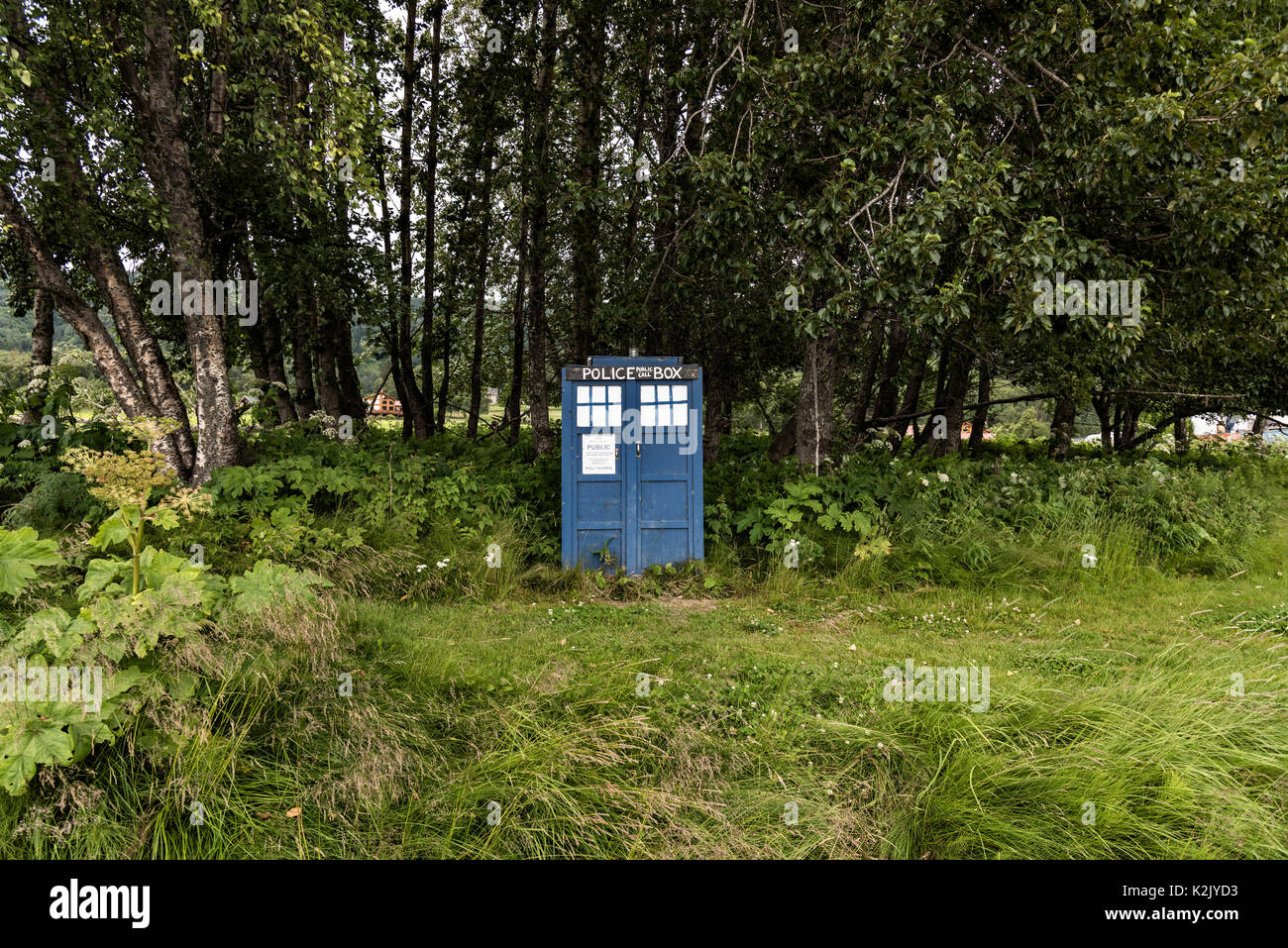 A London Police Public Call Box known by the fictional name of TARDIS from television's Dr Who along the side of the road in remote Homer, Alaska. - Stock Image