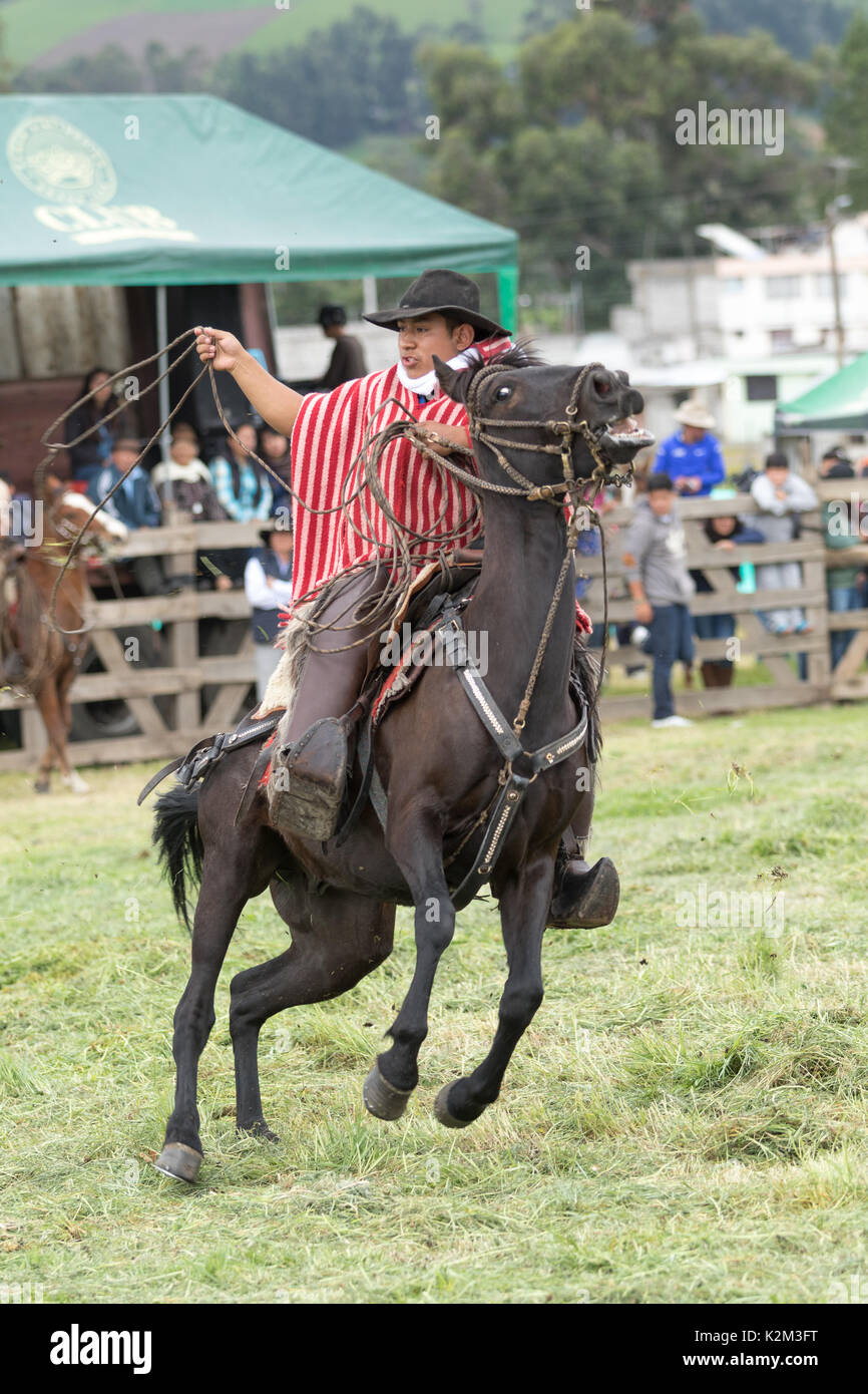 June 3, 2017 Machachi, Ecuador: Andean cowboy on horseback in motion wearing chaps and poncho - Stock Image