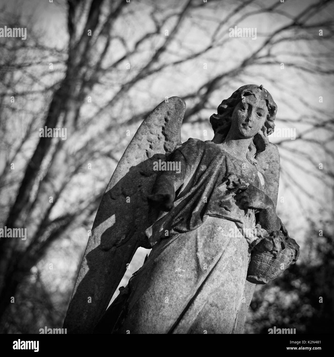 Graves and tombstones at the cemetery in London, United Kingdom - Stock Image