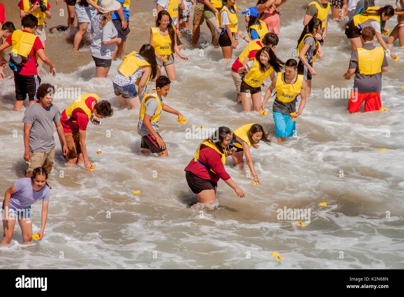 Volunteers in yellow jackets collect plastic ducks as they drift ashore in surf from a pier in Huntington Beach, Stock Photo