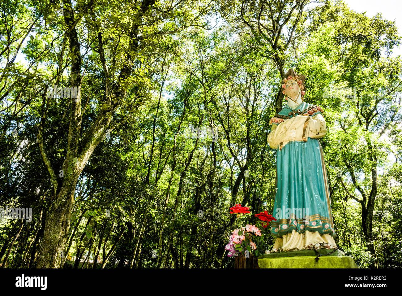 Caibi Santa Catarina fonte: c8.alamy.com