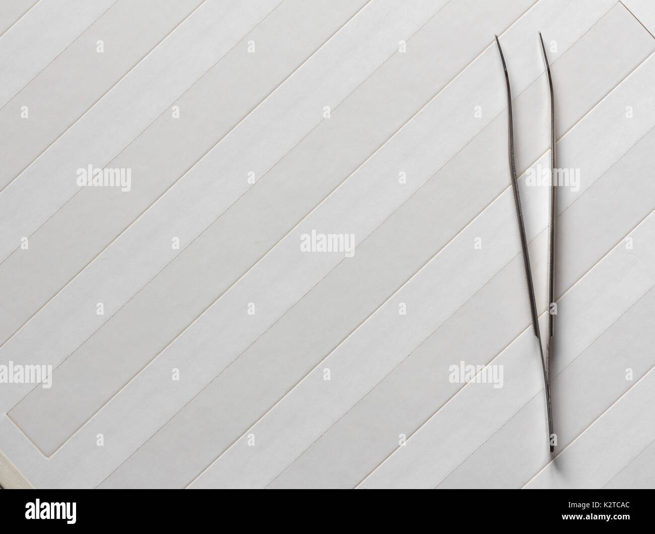 philatelic tweezers stainless steel on a blank album page for stamps vertically. top view closeup. Copy space. Free space for text - Stock Image