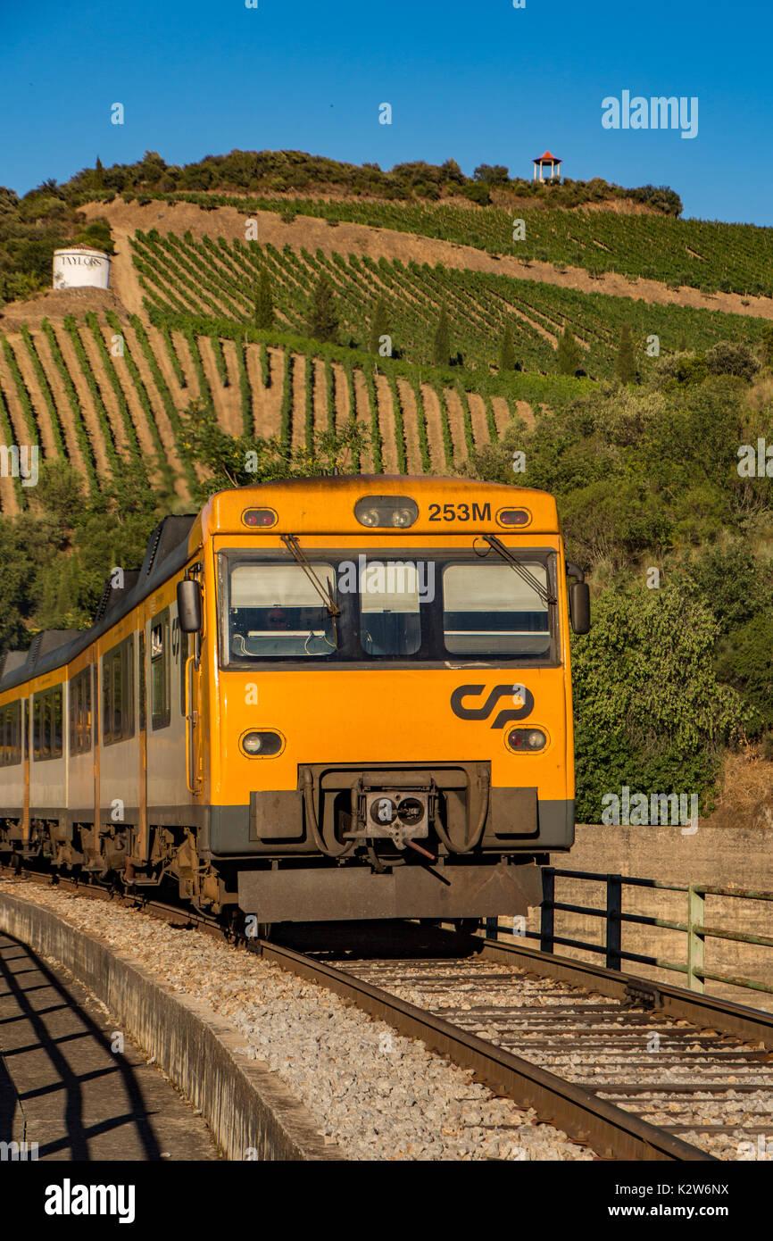 Train North Island Nx
