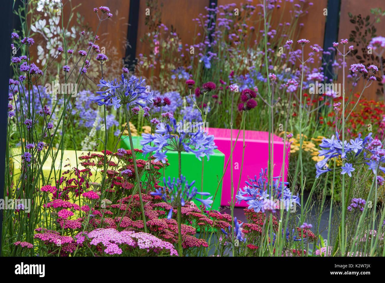 Colour Box.  RHS Hampton Court 2017.  Designer:  Charlie Bloom - Stock Image